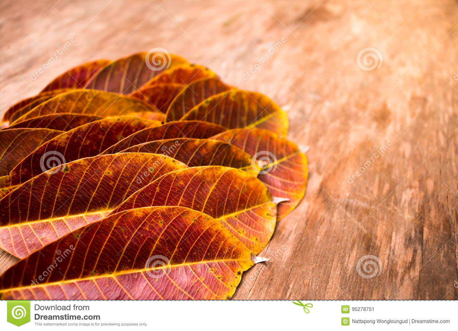 Texturerat Rubber blad