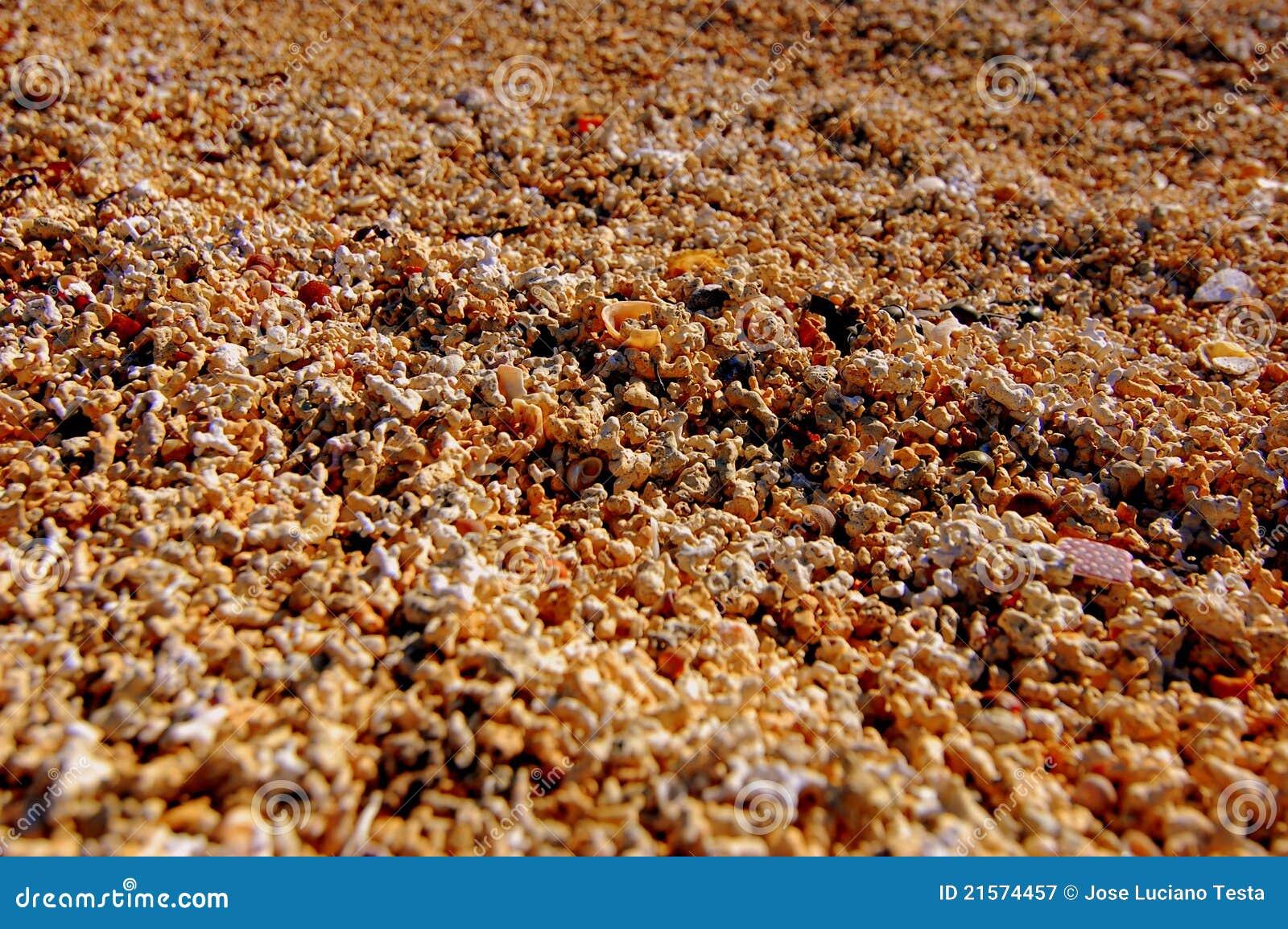 textures de sable de corail photographie stock libre de droits image 21574457. Black Bedroom Furniture Sets. Home Design Ideas