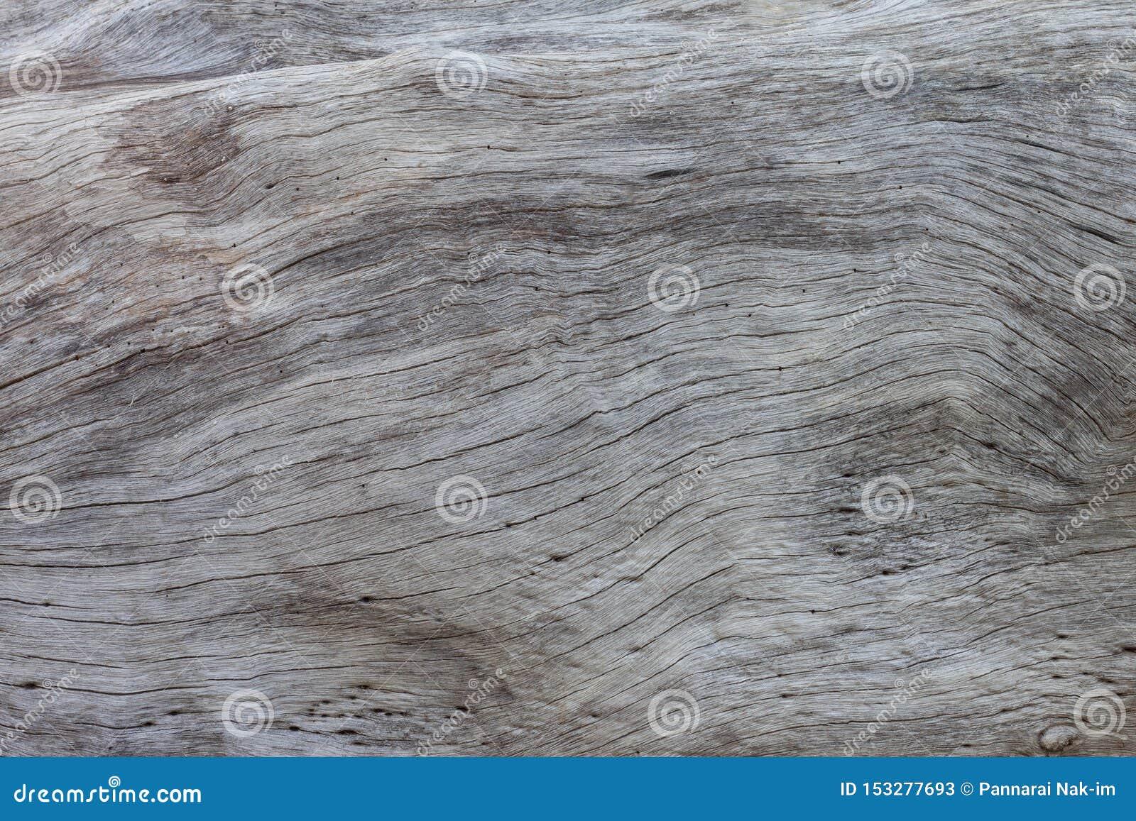 Textuur van oude boomstamboom voor achtergrond