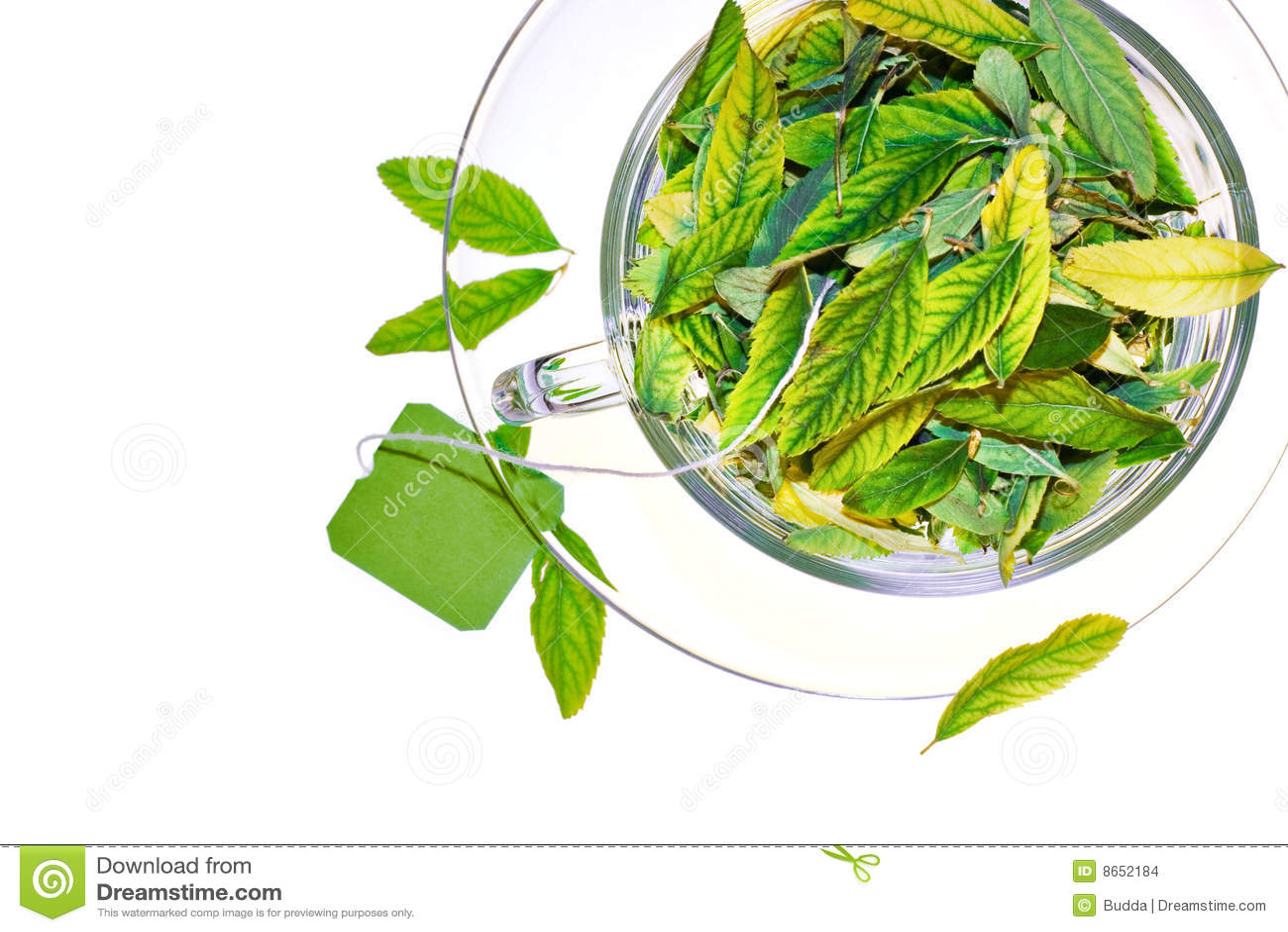 Thé vert de vivacité