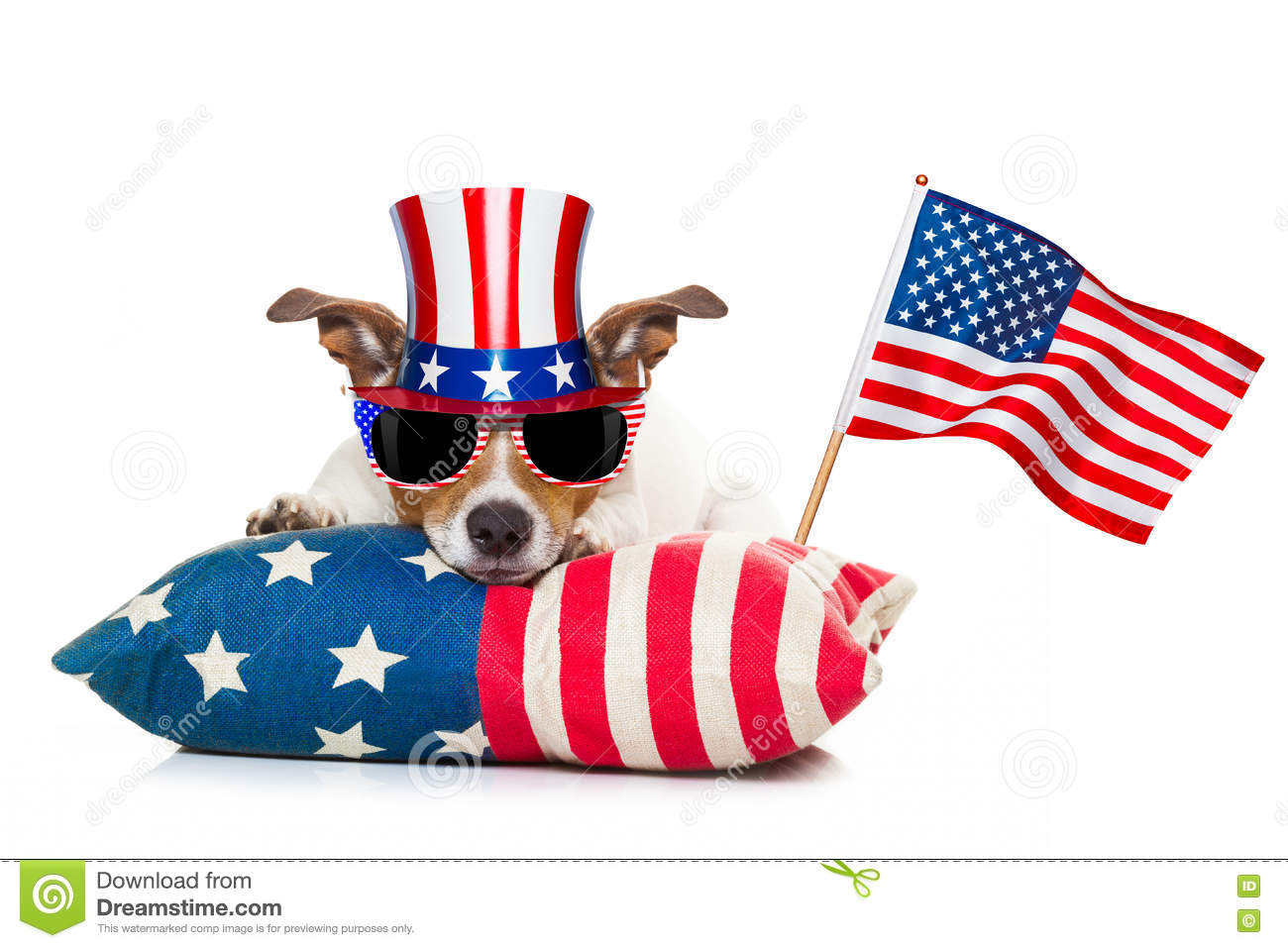 Download 4th Of July Independence Day Dog Stock Image - Image of fourth, independence: 72267563