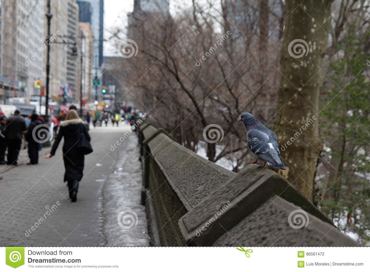 59th Street NYC Editorial Photography Image Of Nine