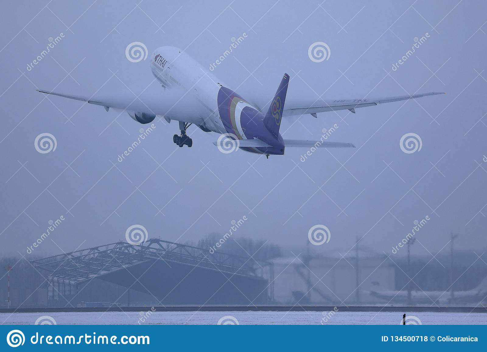 Thai Airways International plane flying up in the sky
