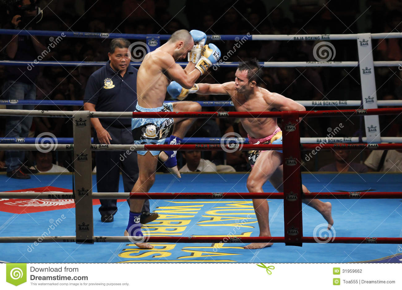 Thai Boxing or Muay Thai