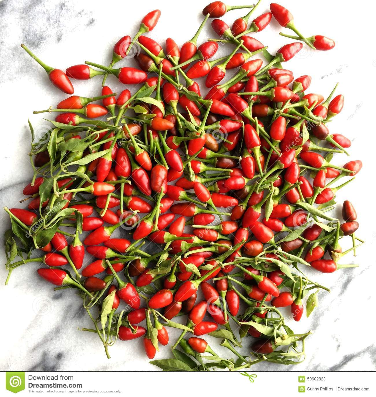 Chili Thai Food
