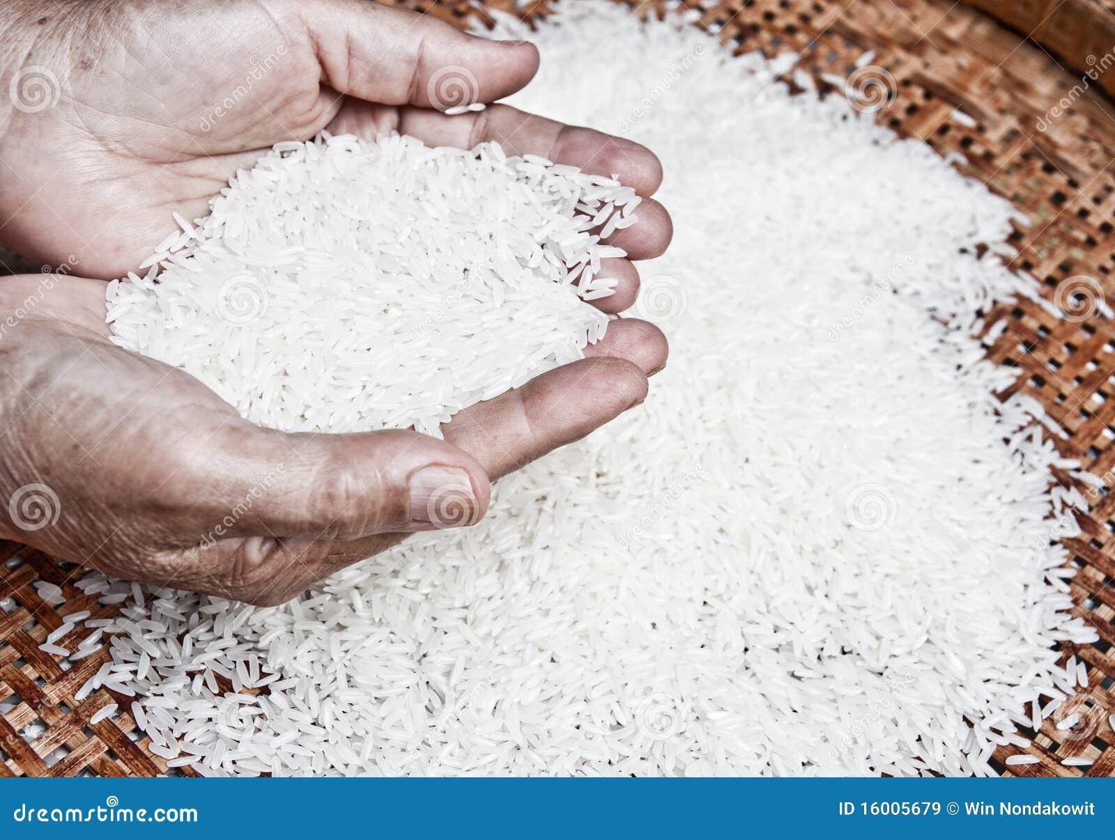 - thai-jasmine-rice-16005679