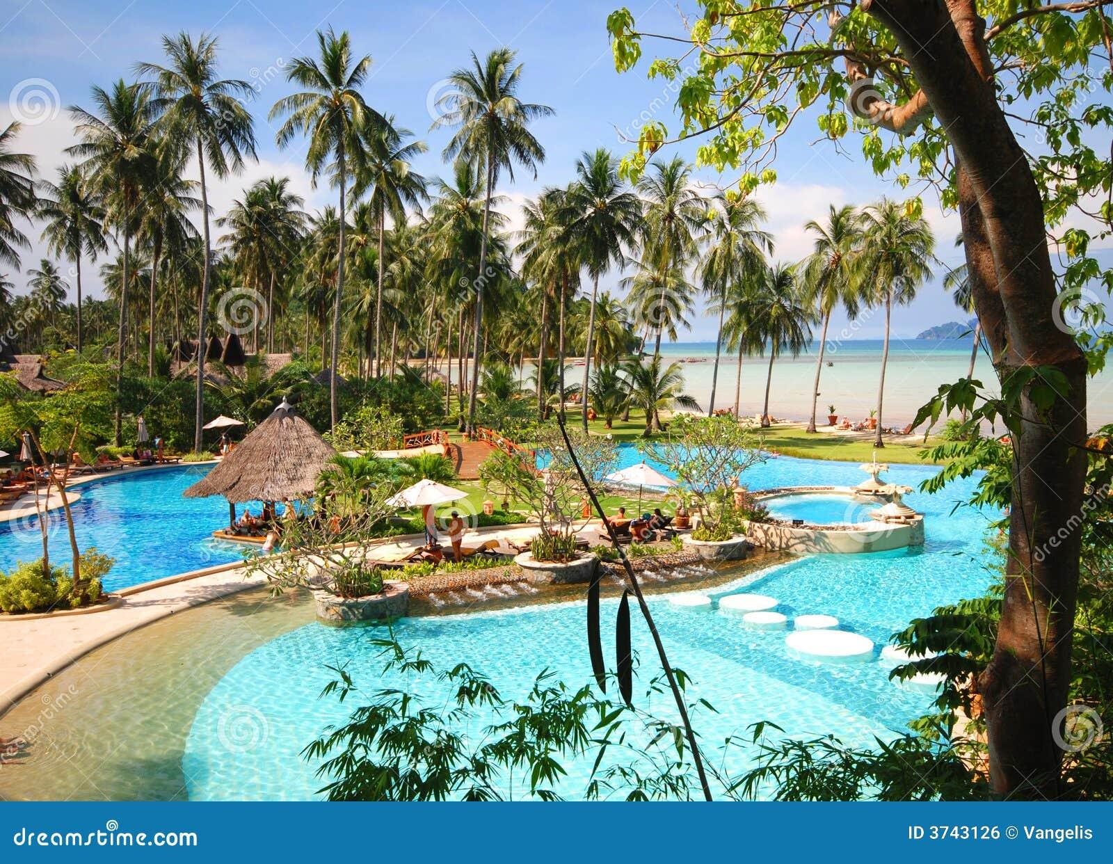 Thai tropiskt för pöl
