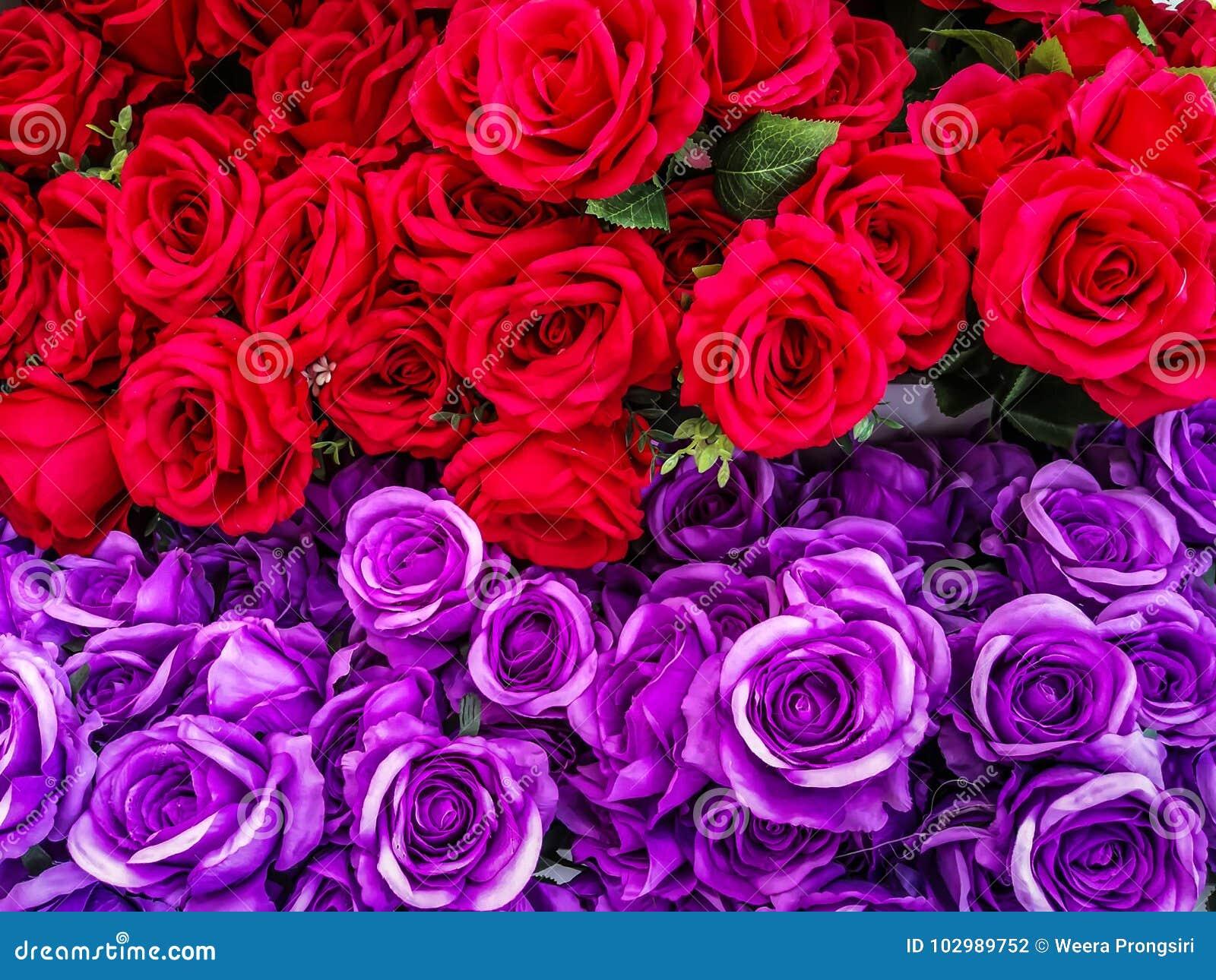 Thailand, Arrangement, Beauty, Birthday, Blossom Stock Photo - Image ...