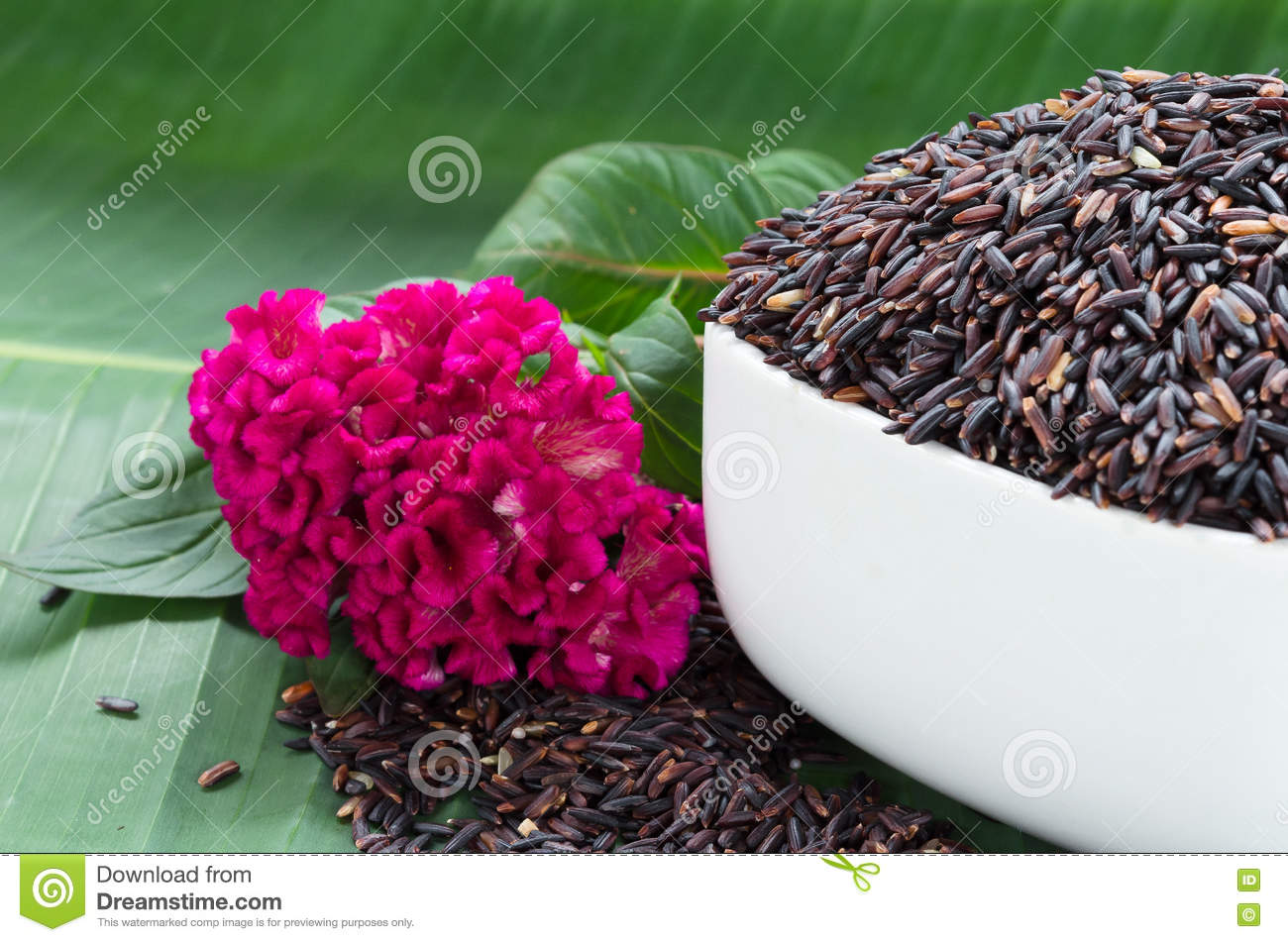 Thailand Brown Rice On White Bowl With Pink Flower And