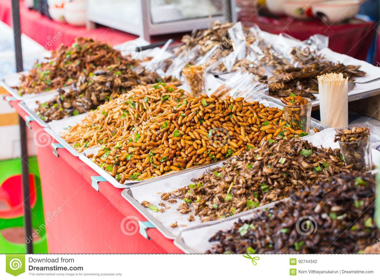 """Ulična hrana"" - STREET FOOD Thailand-bug-fried-sale-business-asian-insect-snack-food-bug-fried-sale-business-asian-insect-snack-food-high-protein-nature-92744342"