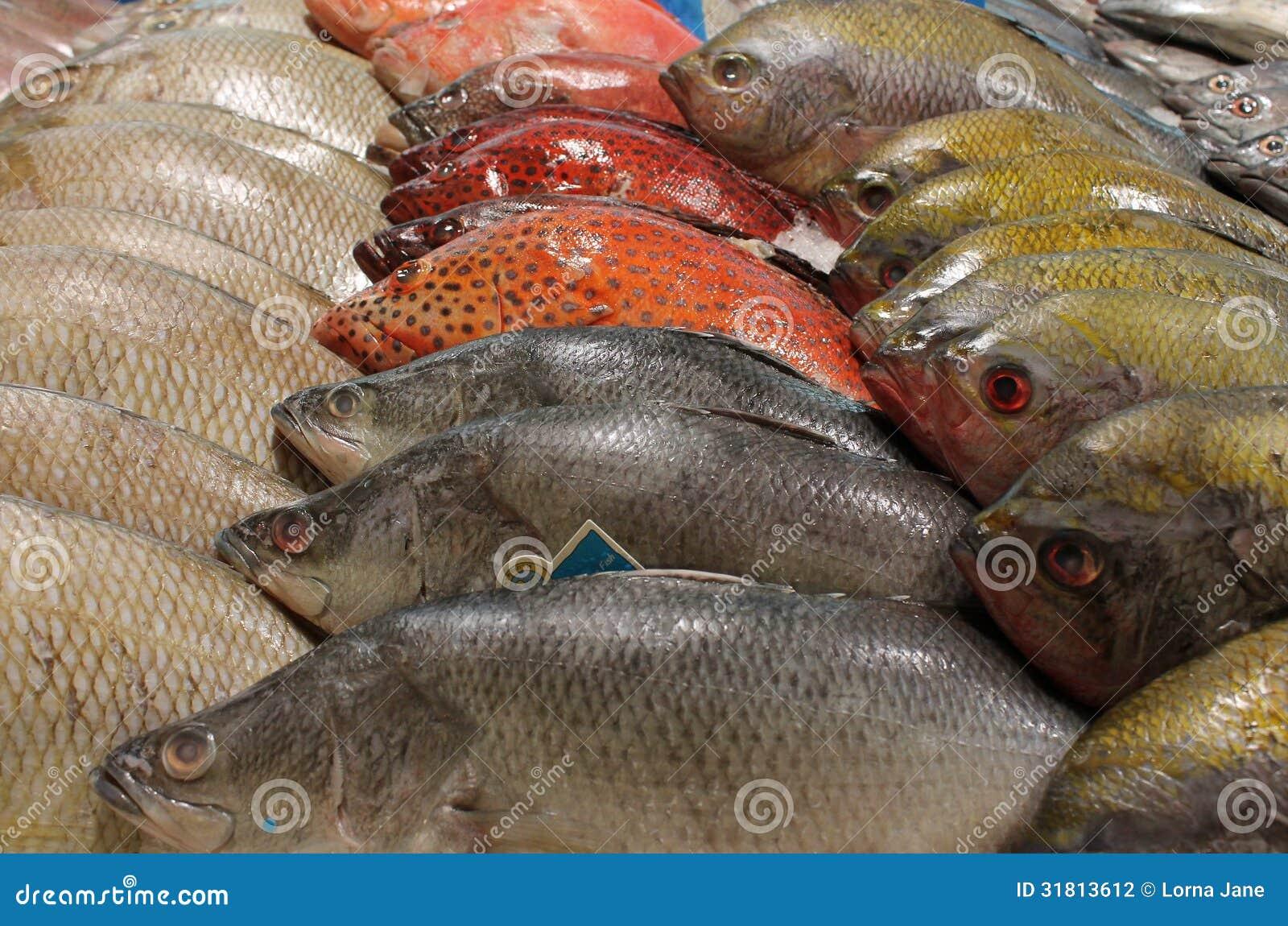 Thailand för stall för gatamatfisk fiskhandlare