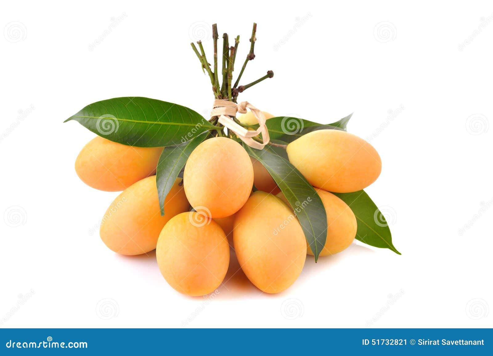 Thaise die fruit van de close-up het zoete Marian pruim op witte backgroun wordt geïsoleerd