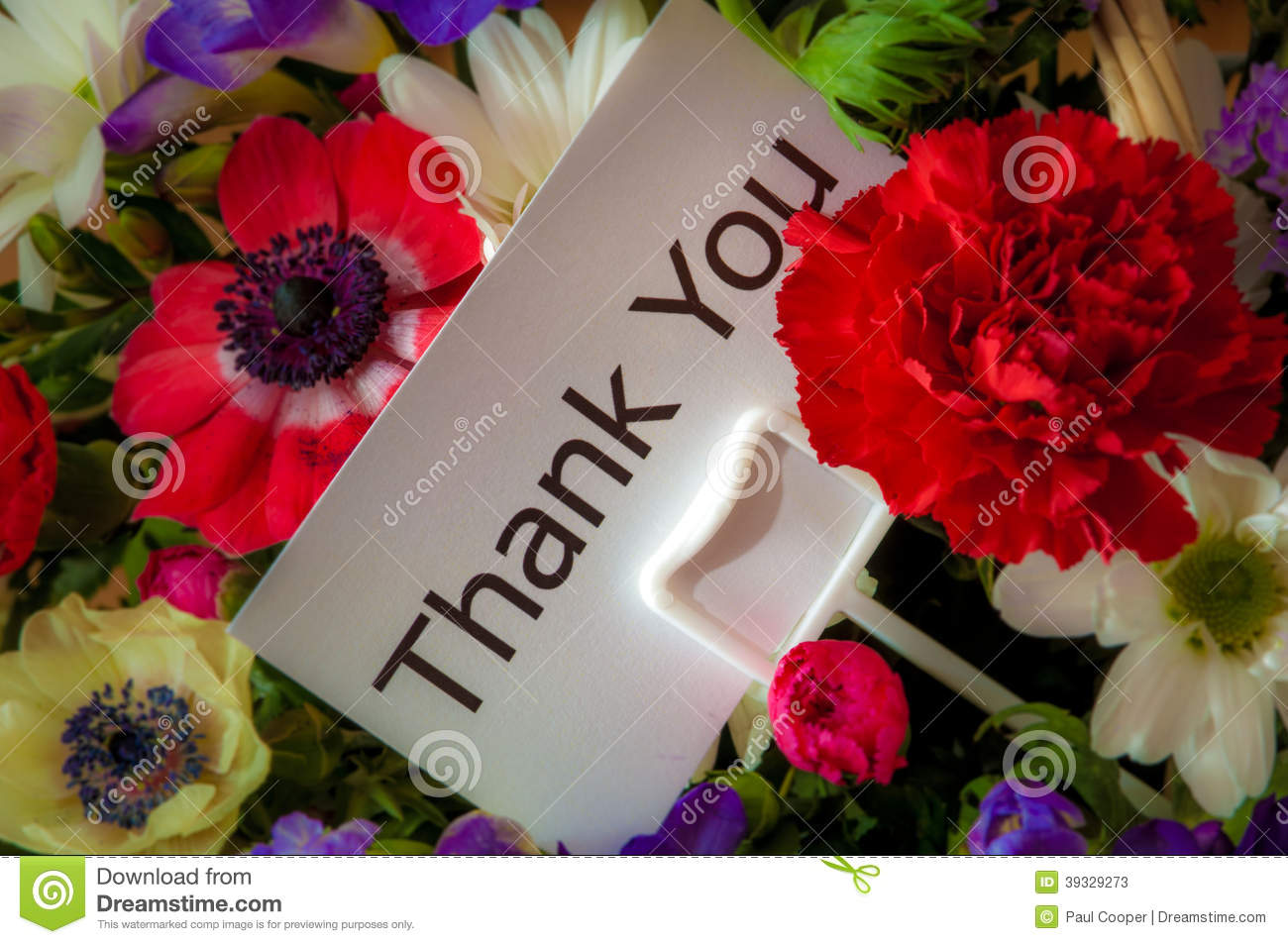 Thank you card in flowers stock image image of message 39329273 thank you card in flowers izmirmasajfo Image collections