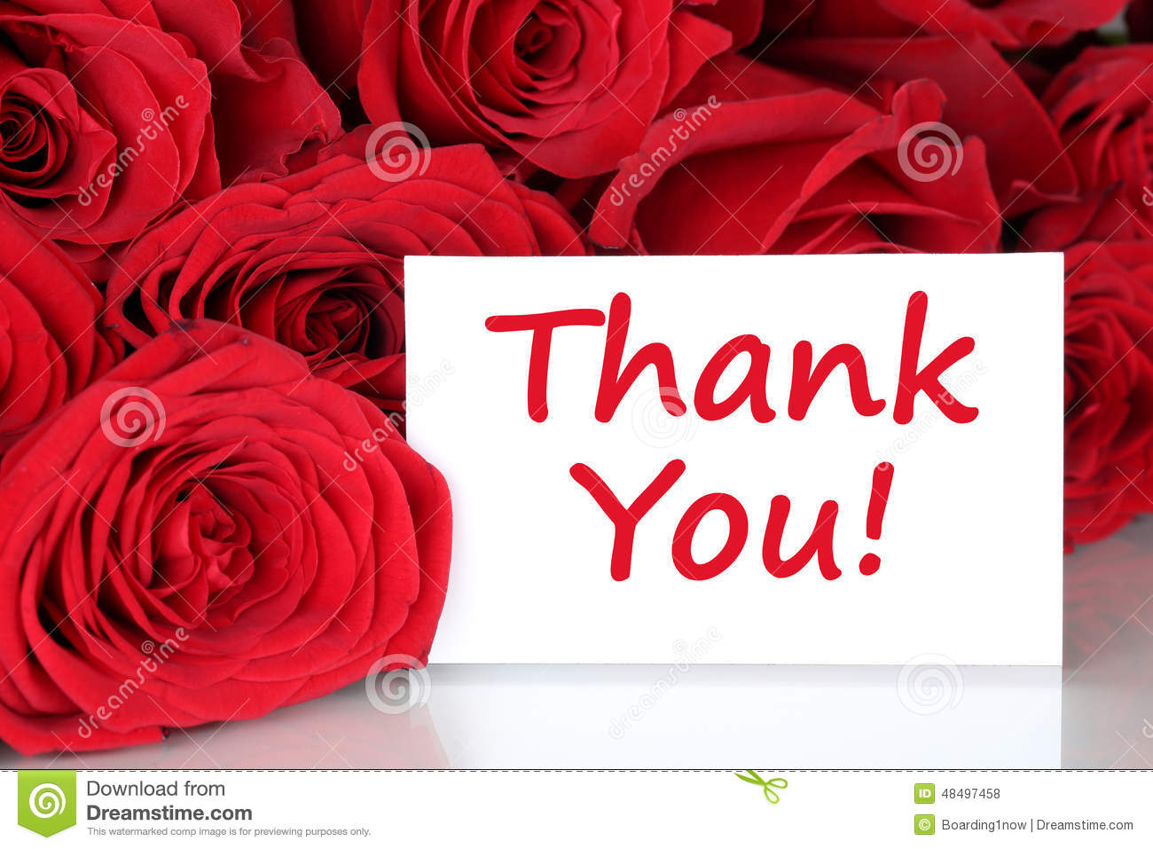 Thank You Card With Red Roses Flowers Stock Photo Image Of