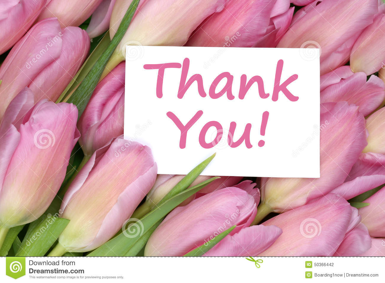 Thank You Flowers Stock Photos Royalty Free Stock Images