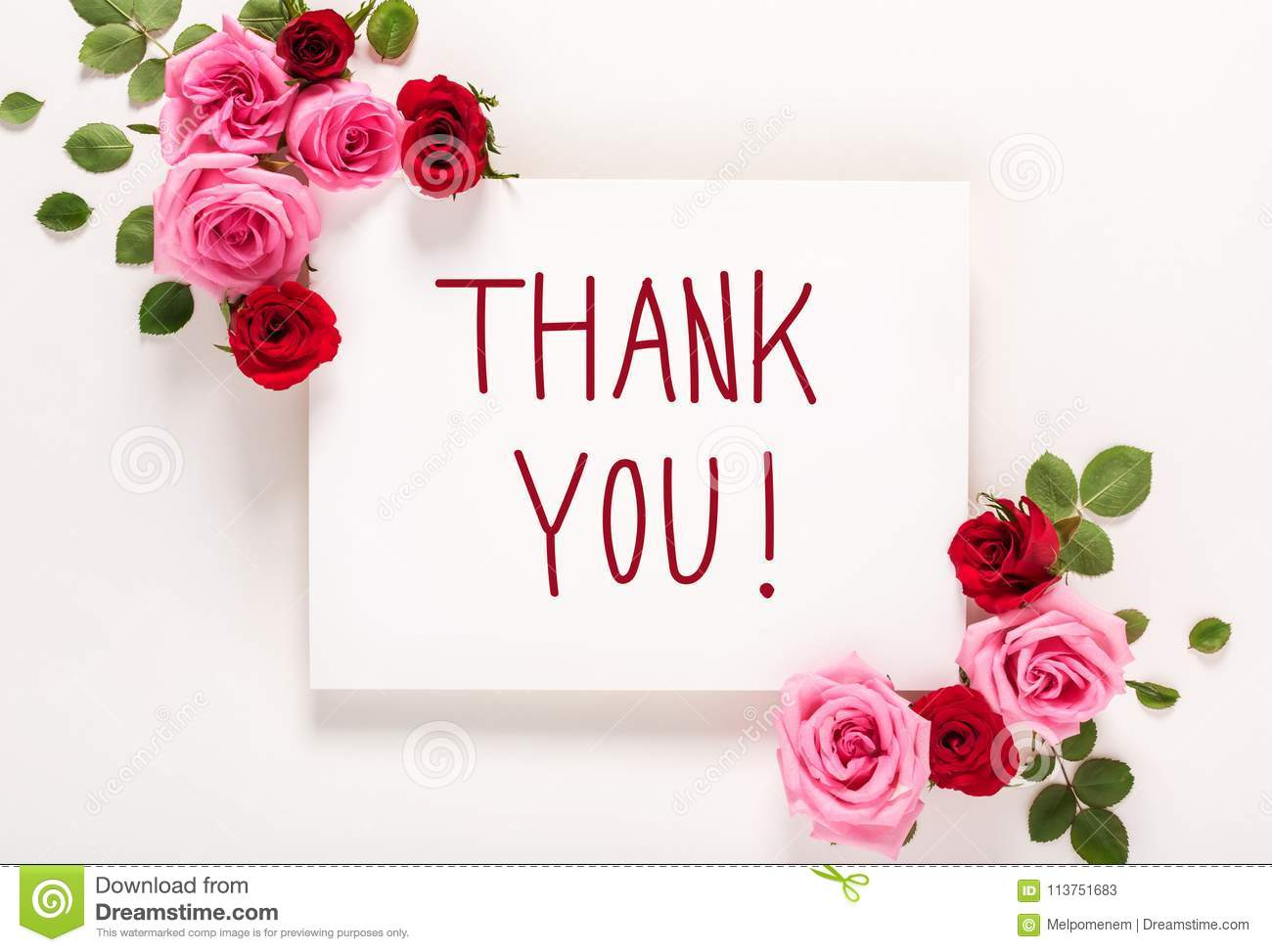 thank you message with roses and leaves stock image image of