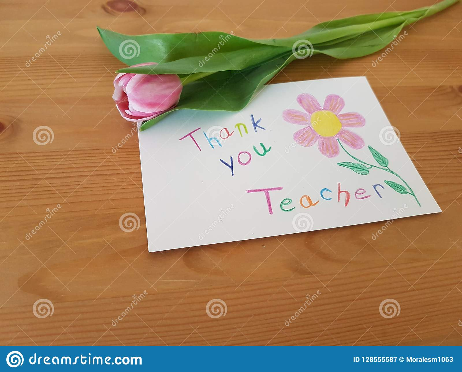 Thank You Teacher, Thank You Note With Tulip Stock Image - Image of