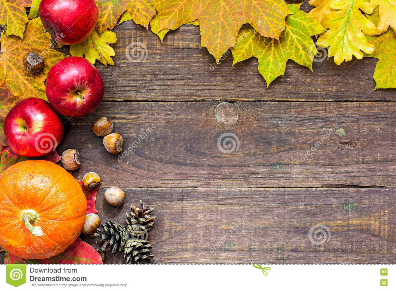 thanksgiving autumn fall background with pumpkin leaves apples and