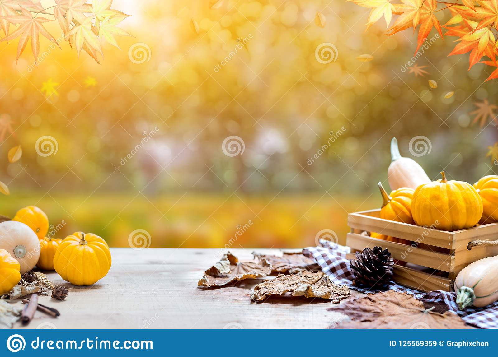 Thanksgiving background in autumn and fall