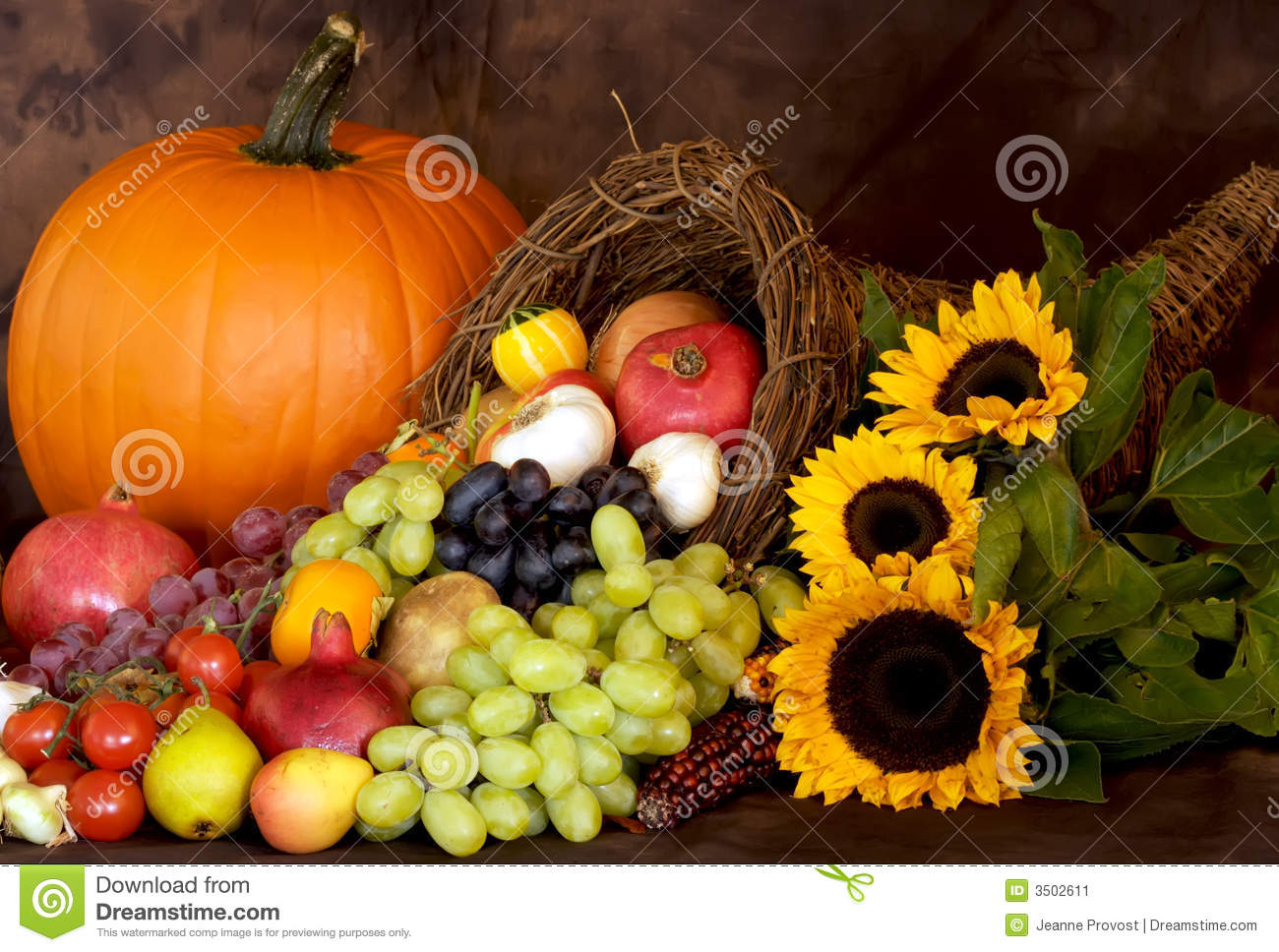 thanksgiving bounty stock image image 3502611