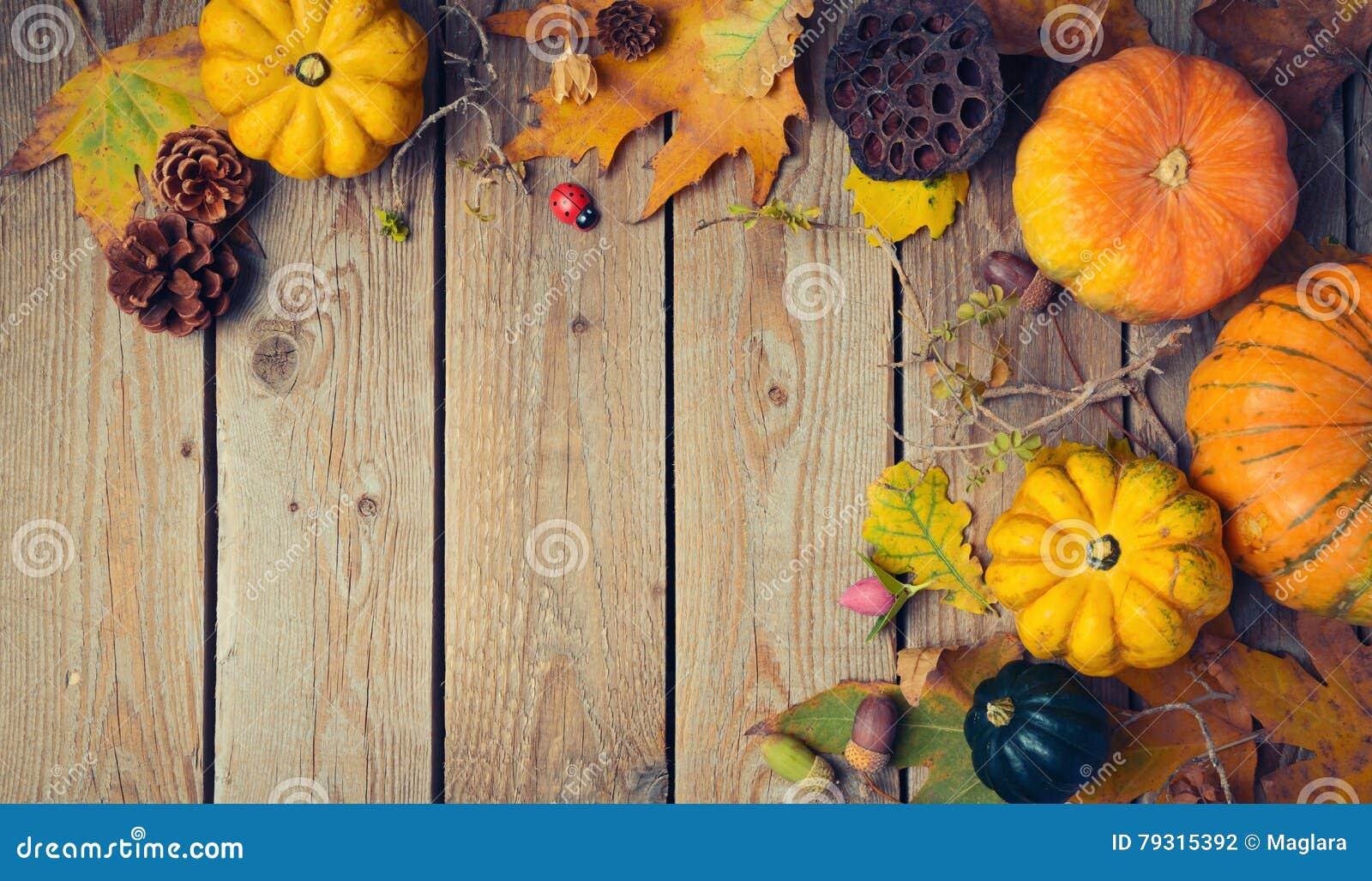 thanksgiving dinner background  autumn pumpkin and fall