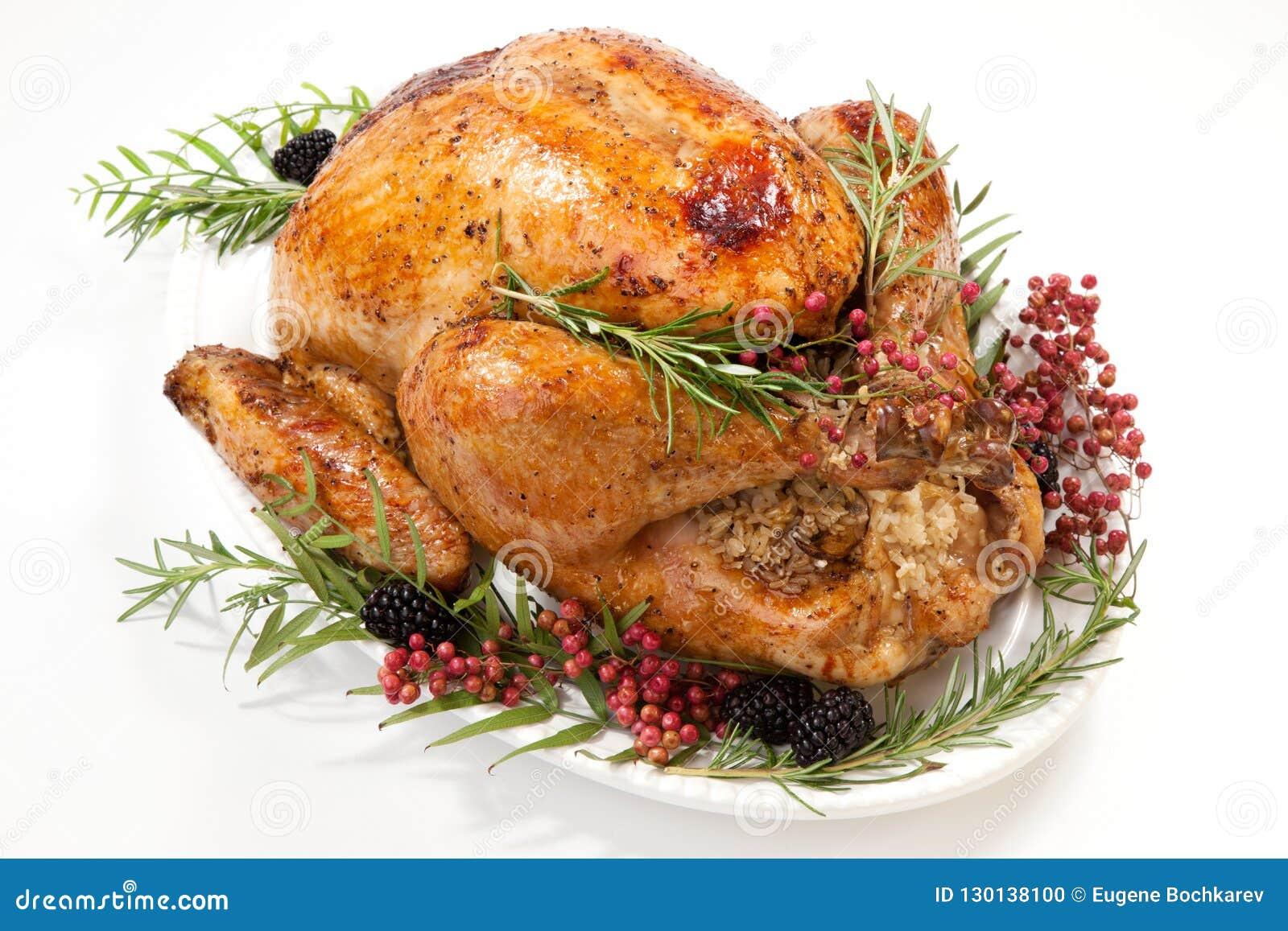 Thanksgiving Turkey on White
