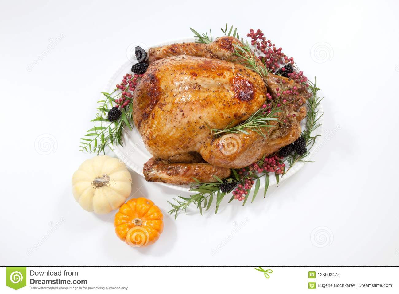 Thanksgiving turkey on white stock image image of cooked turkey download thanksgiving turkey on white stock image image of cooked turkey 123603475 publicscrutiny Image collections