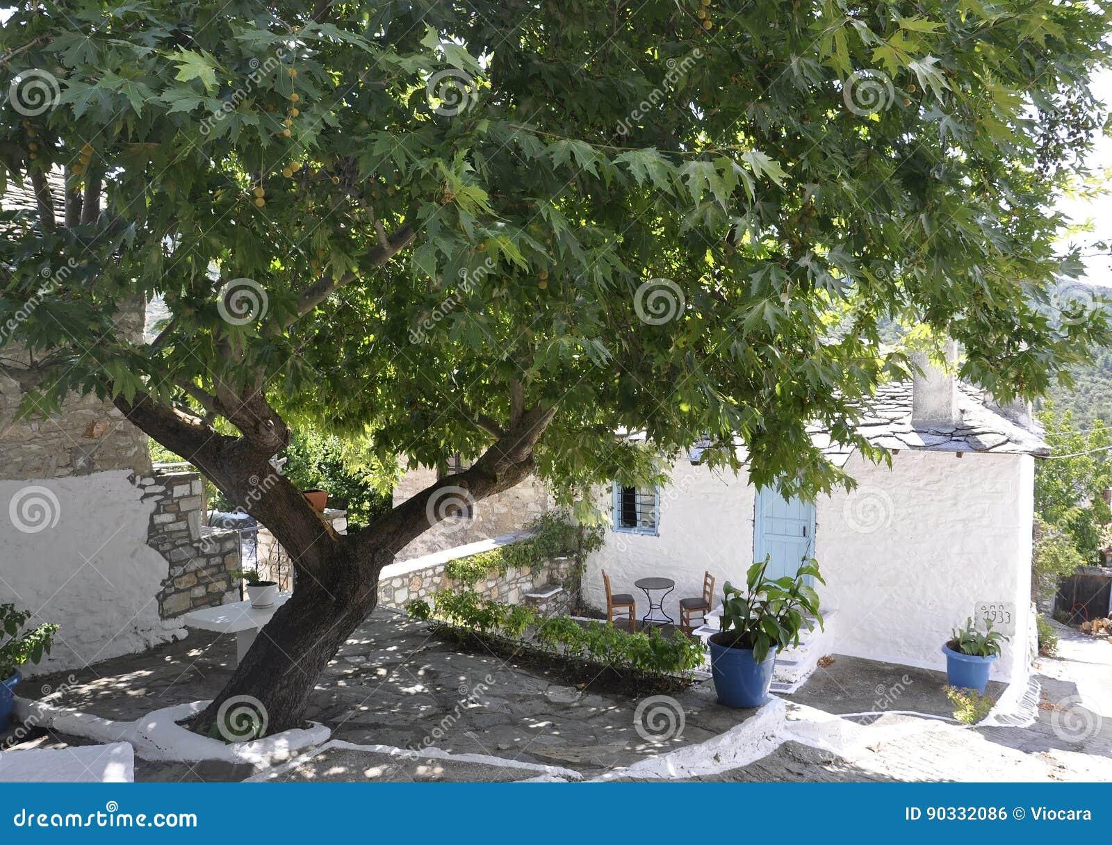 Thassos, Sierpień 23th: Tradycyjny domowy podwórze w Theologos wiosce od Thassos wyspy w Grecja