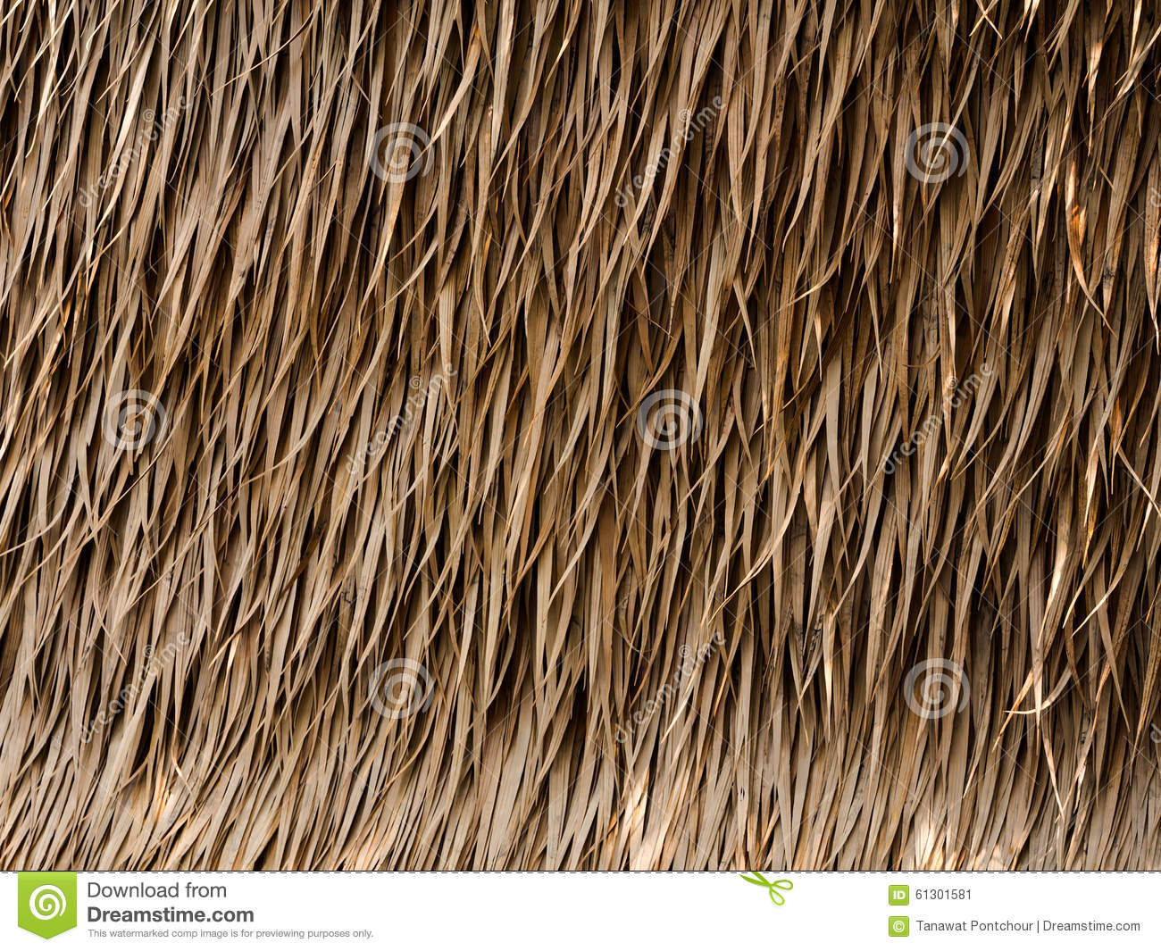Thatch roof background