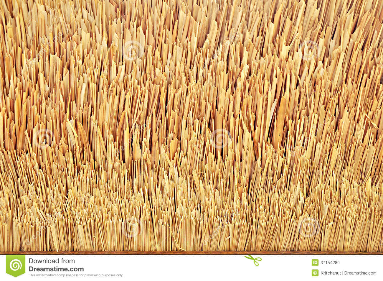 Thatch Roof Texture Stock Photo Image Of Cover Leave