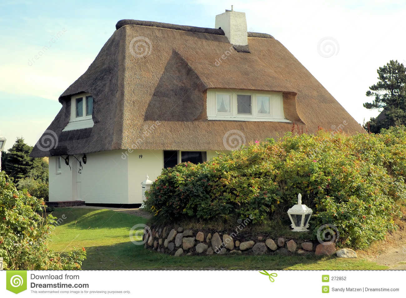Thatched крыша house5