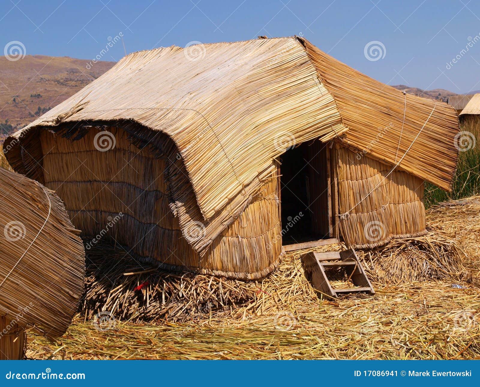 Thatched Hütte