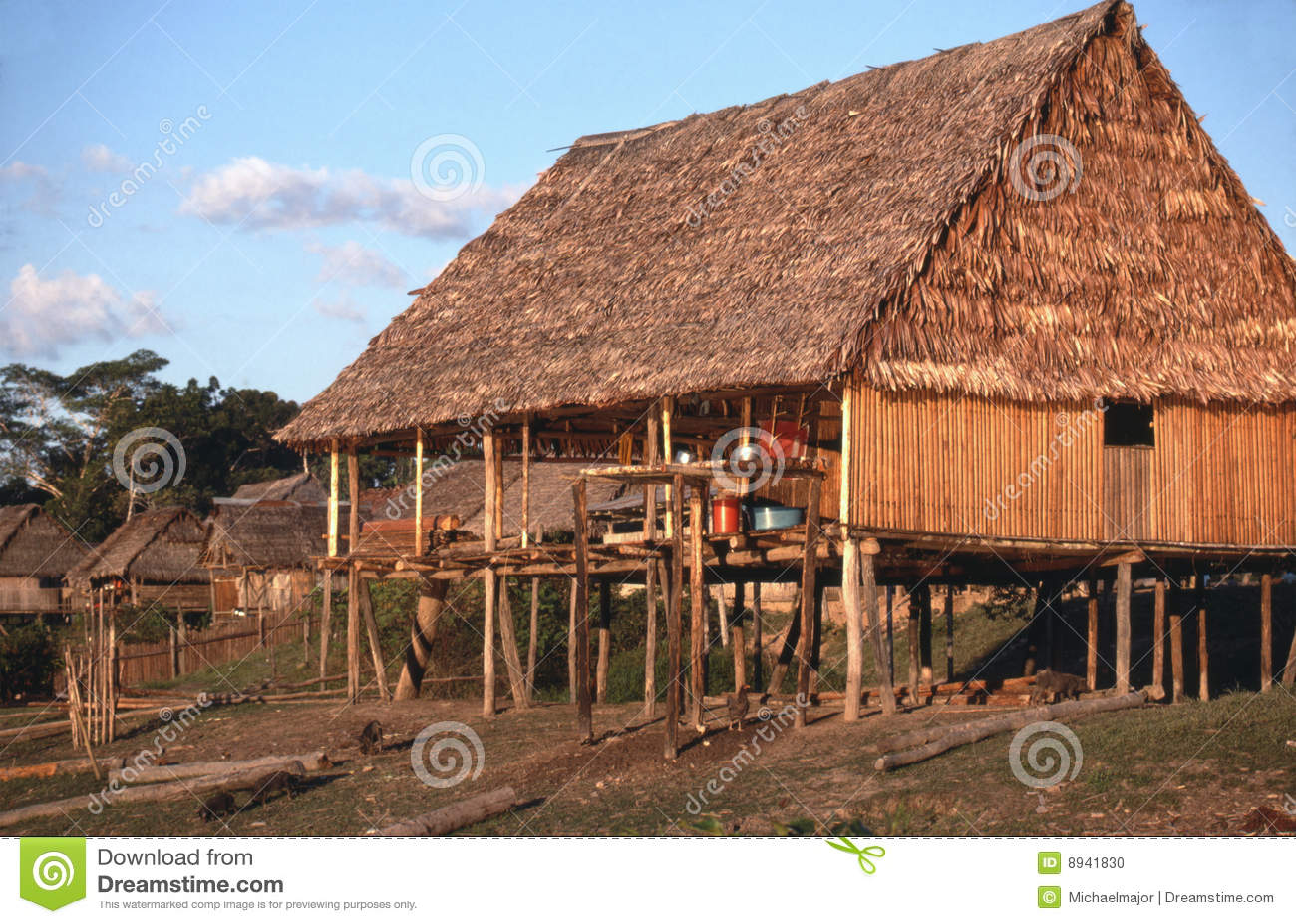 Thatched hut on peruvian amazon stock photo image 8941830 for Amazon casa