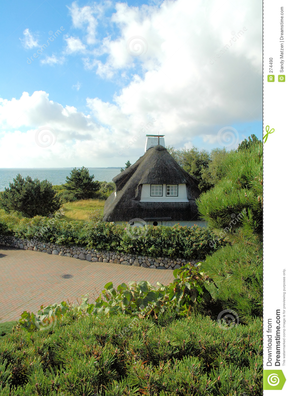 Thatched roof house 1