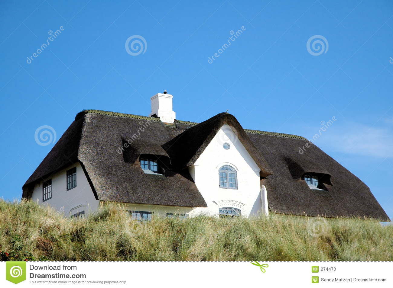 Thatched roof house 2