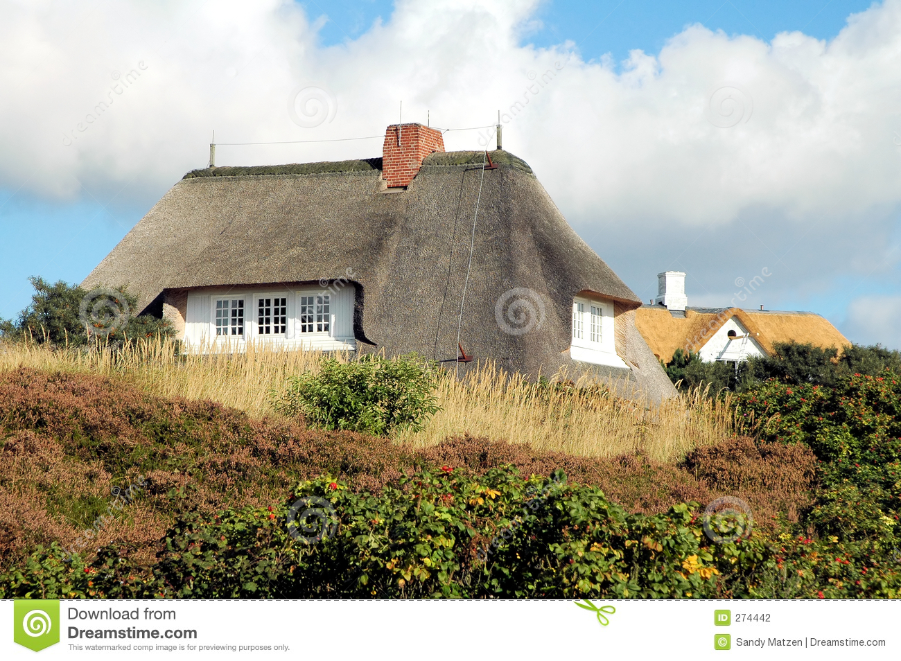 Thatched roof house 3