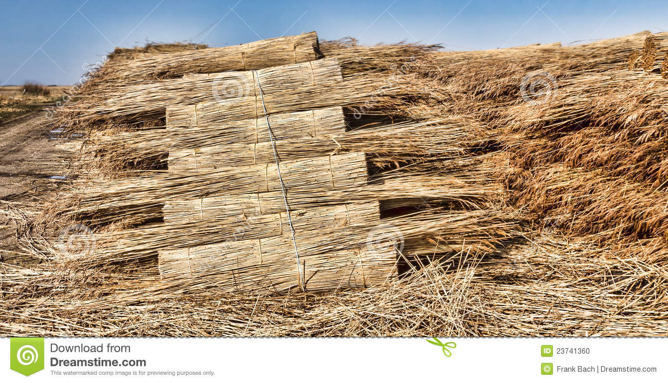 Awesome Reed Roofing ...