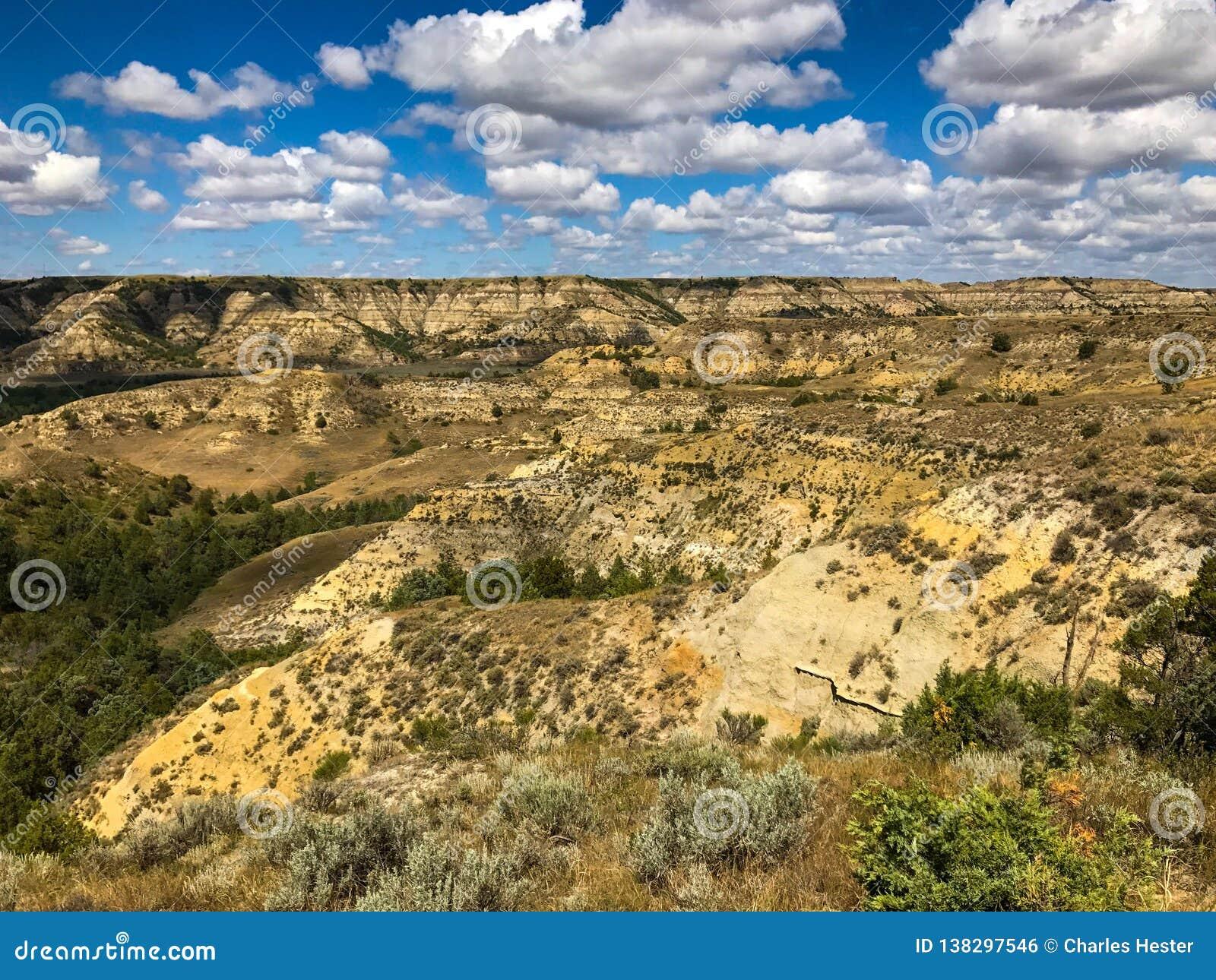 Theodore Rosevelt National Park
