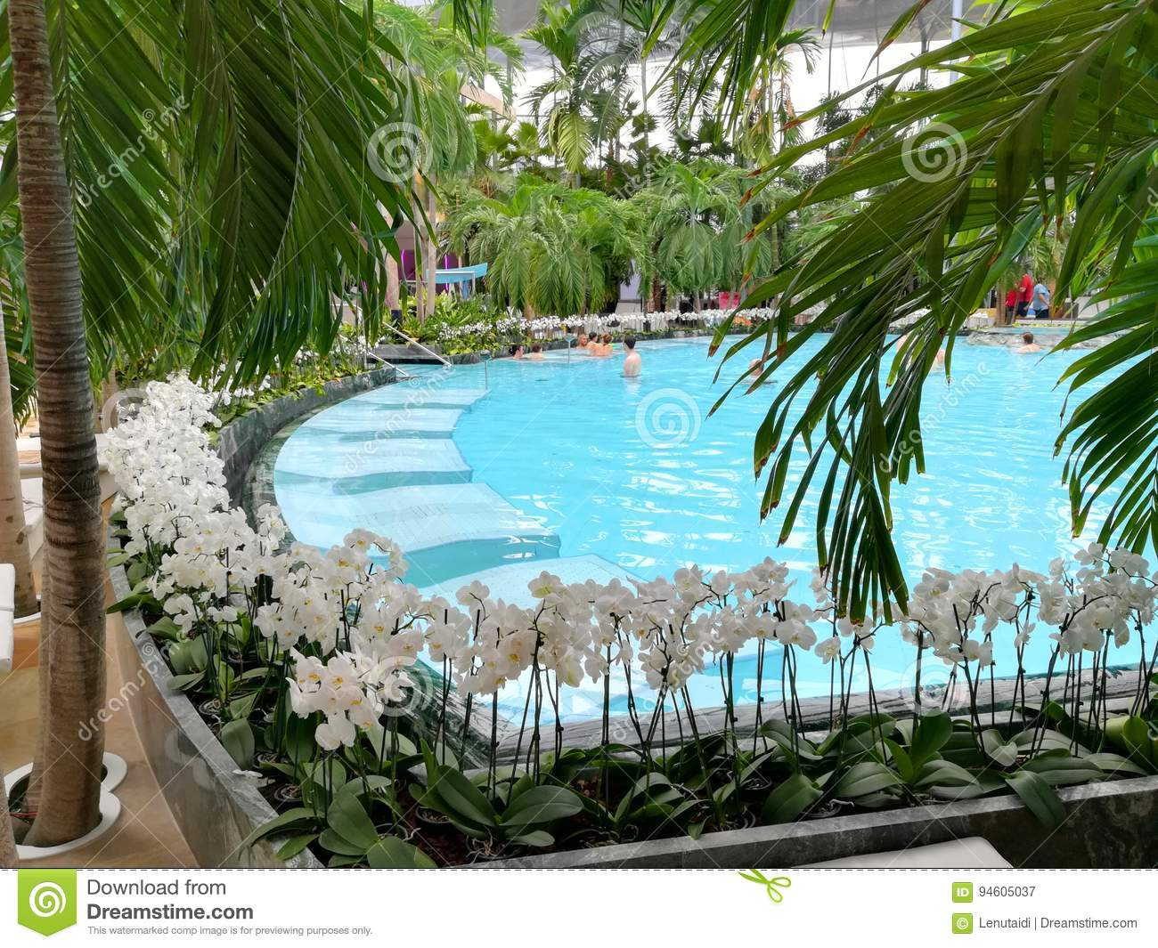Thermal pool - white orchids on the edge