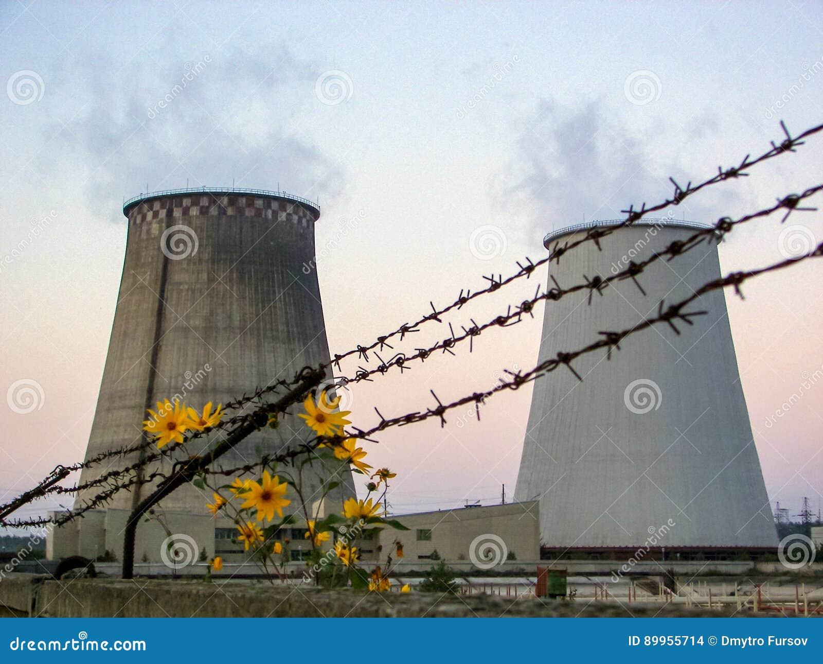 Thermo-elektrische installatie en bloemen