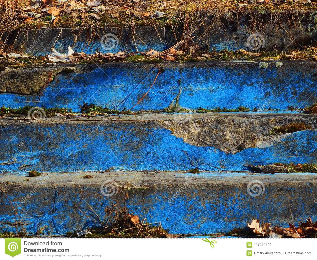 thickets of blue steps with grass from old age stock photo image