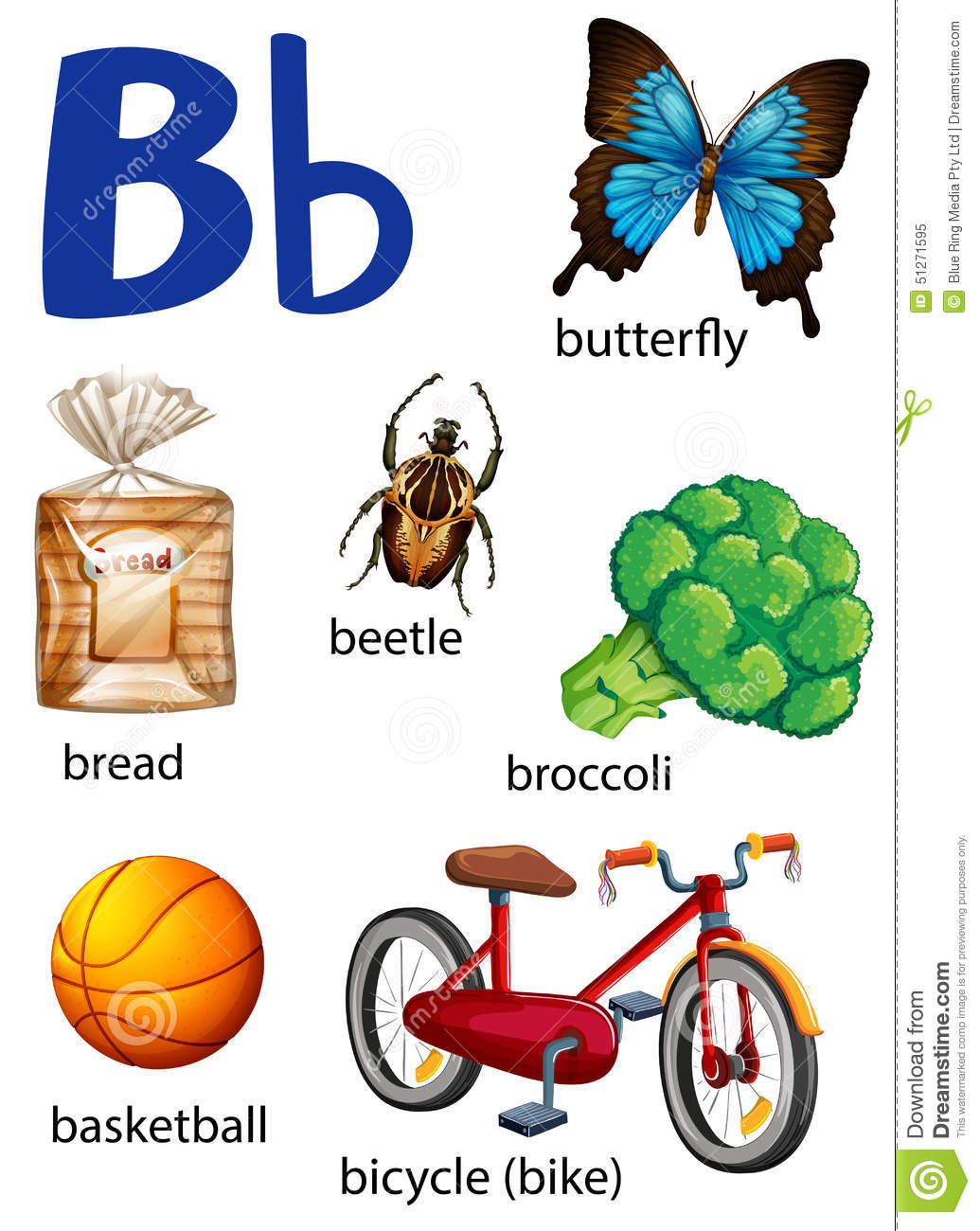 Things that start with the letter b stock vector illustration of things that start with the letter b altavistaventures Choice Image