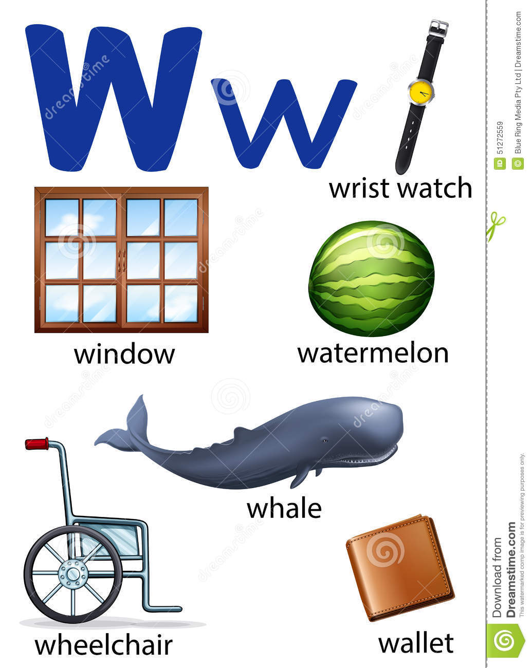 Things That Start With The Letter W Stock Vector Image