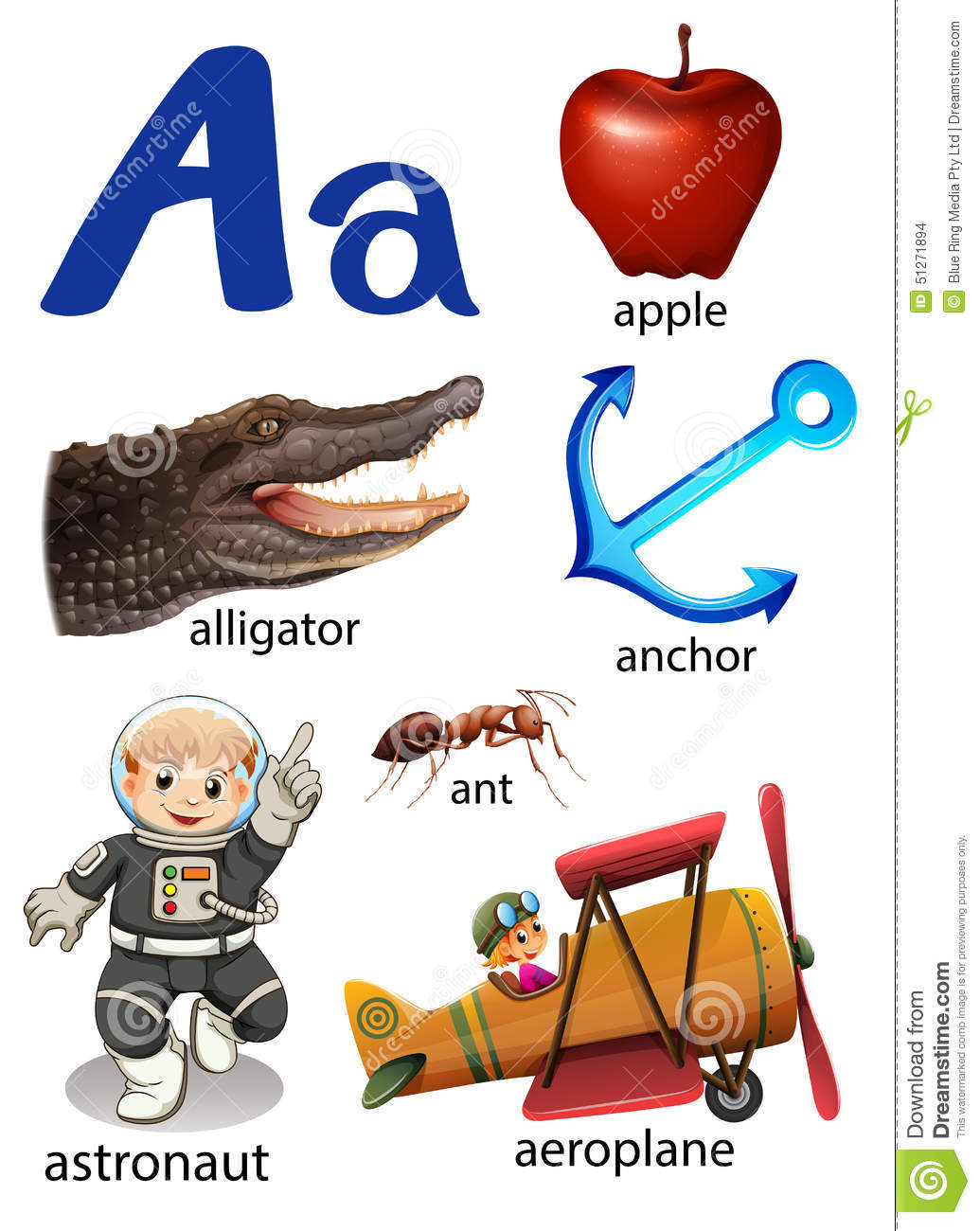 Things that start with the letter A on a white background.