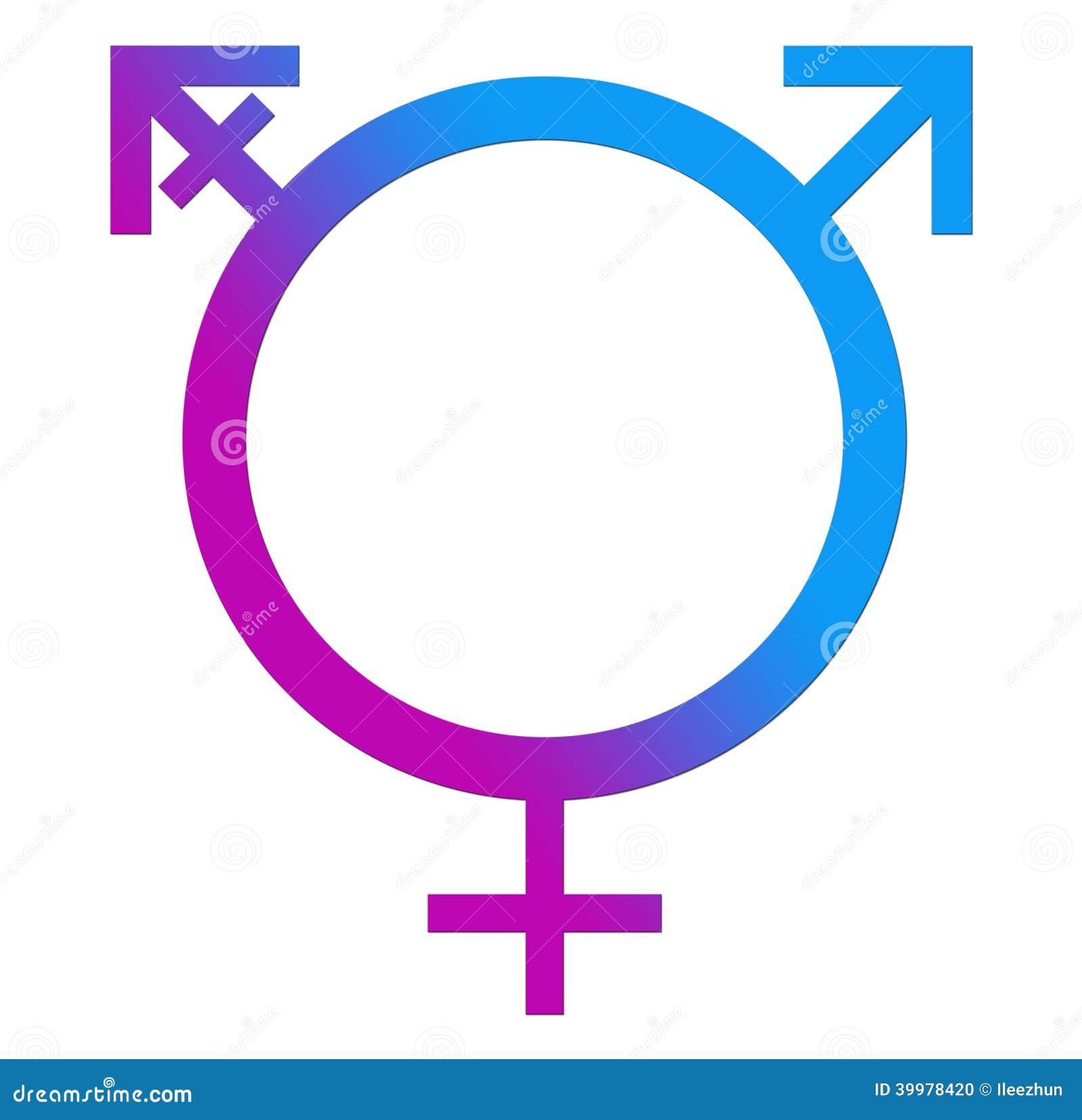 Third Gender Blue Pink Circle Stock Illustration Illustration Of