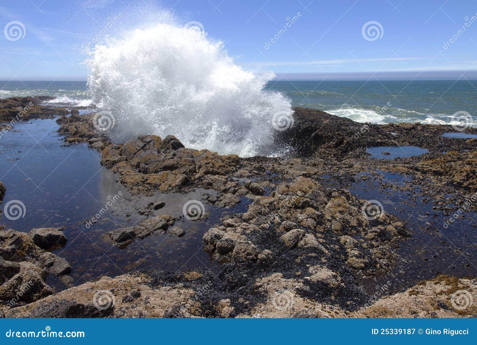 Thor39s Well Oregon Coast Royalty Free Stock Photography