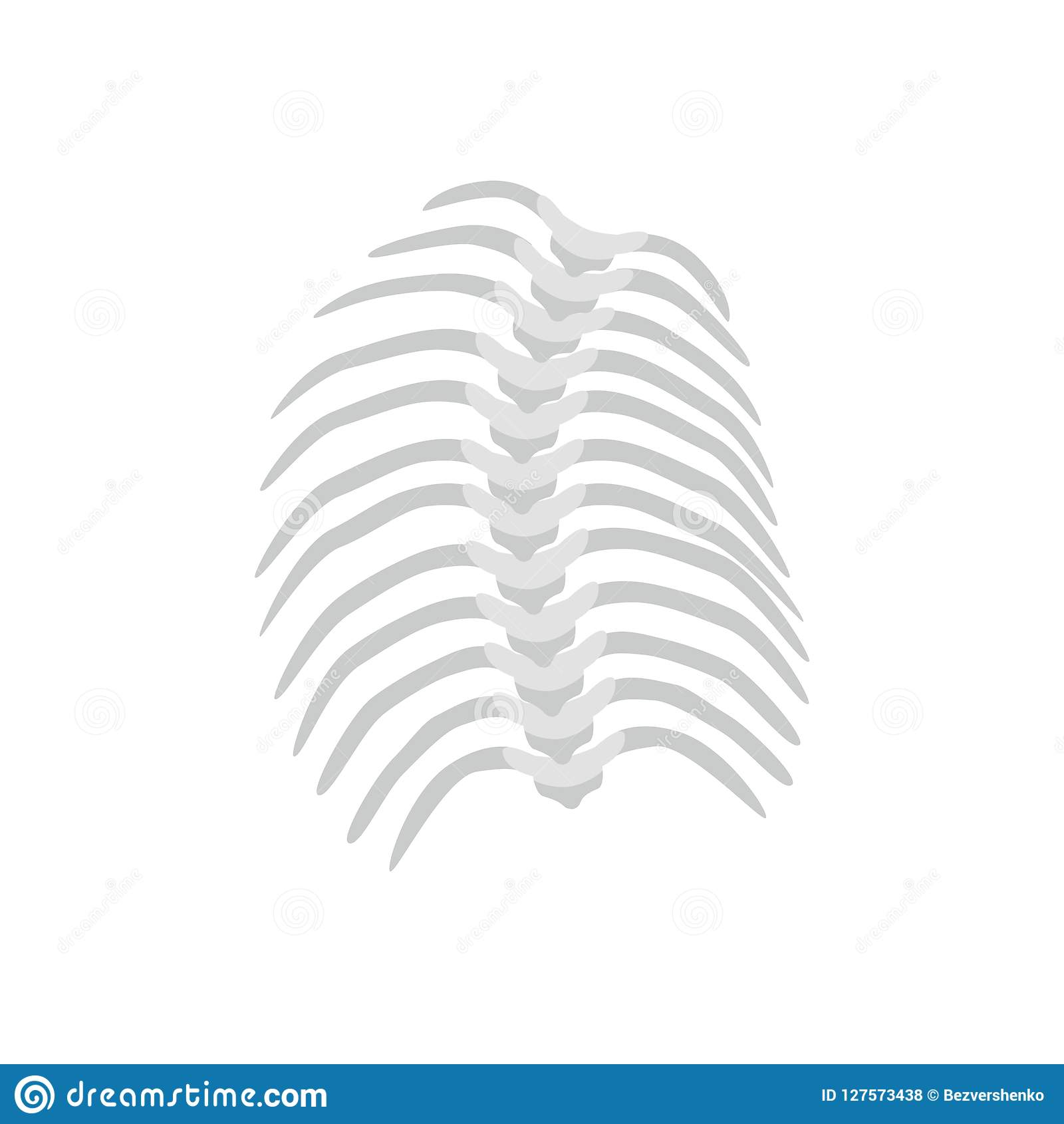 Thoracic Scoliosis on the thoracic spine and curved backbone concept vector illustration in flat design isolated on