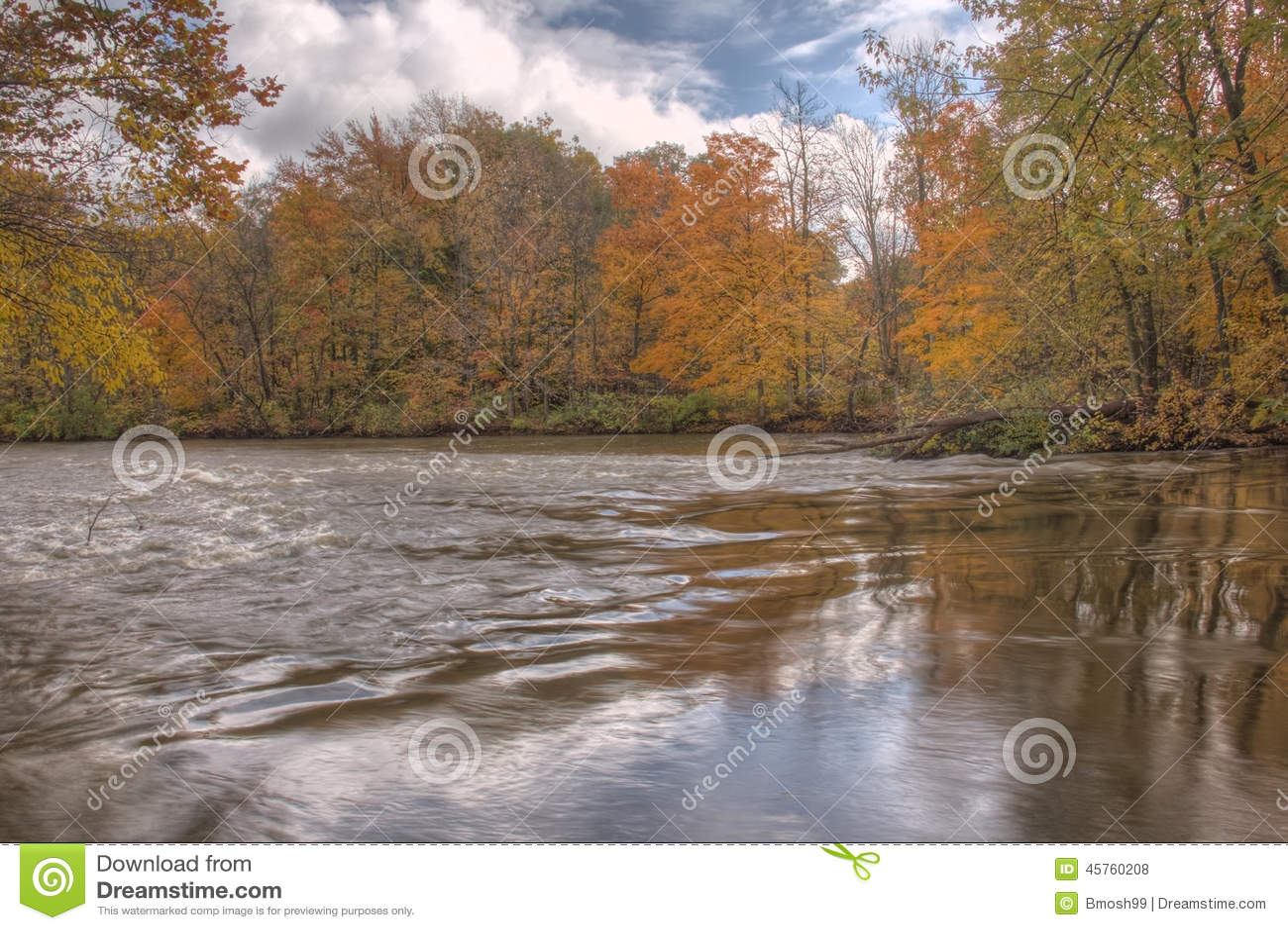 Thornapple River In Alaska, Michigan Stock Photo - Image of