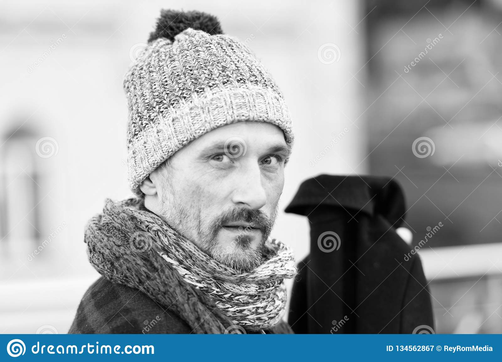 27454c7b0dd Portrait of stylish middle aged bearded man wearing woolly hat and being  thoughtful while looking at you with calmness in his eyes
