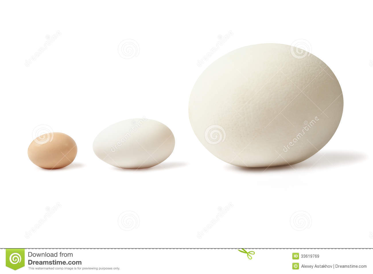 Thre Eggs Lined Stock Image Image Of Advantage Eggs